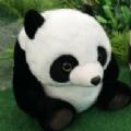 大熊猫认脸