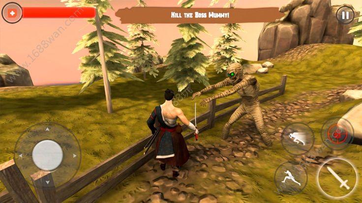 武士阴影传说游戏图片2